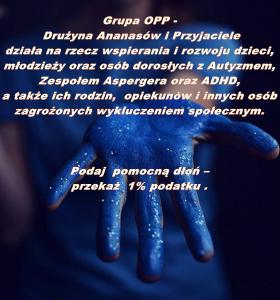 Drużyna Ananasów i Przyjaciele_Opis działalnosci.tif